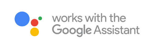 Google Assistant/Home action